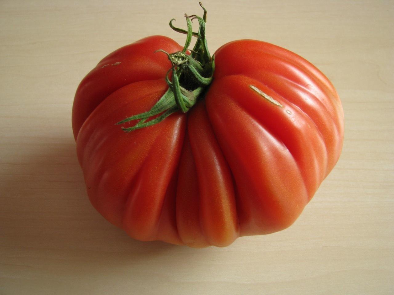 Ochsenherz Tomate Coeur de Boeuf Cuore di bue Giant Ox Heart Fleischtomate
